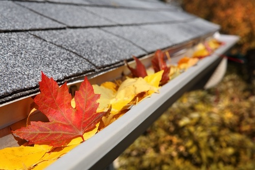 Fall Home Maintenance - Clean Gutters